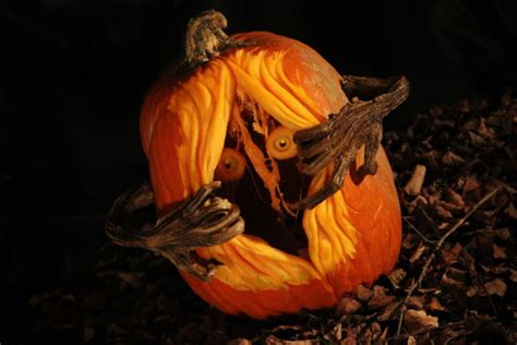 best carved pumpkins 125 pumpkin carving ideas digsdigs