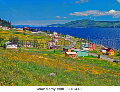 small villages in usa a small harbor with fishing boats at ferryland