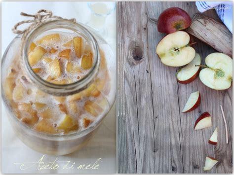 aceto fatto in casa benefici aceto di mele fatto in casa deco foto food