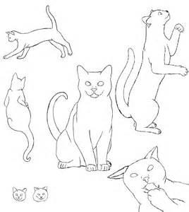 new cat profile by smirks105 on deviantart
