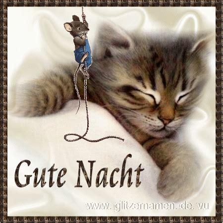 Gute Nacht Katzen Bilder by Gute Nacht Katze Maus Animationen Gute