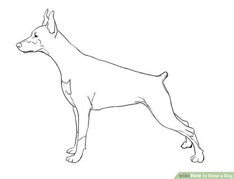 draw realistic puppy 5 easy ways to draw a with pictures wikihow