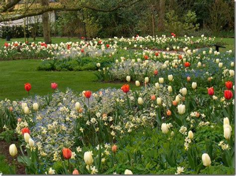 Bulb Garden Layout Garden Design
