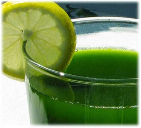 Wheatgrass Detox Liver by Take Back Your Health Edmark Splina Liquid Chlorophyll