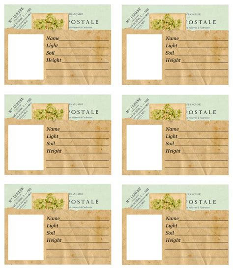 Plant Tag Template landscaping for free or how to organize a plant