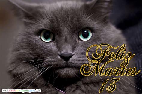 Imagenes Feliz Martes Animales | banco de im 193 genes 161 feliz martes 13 im 225 genes