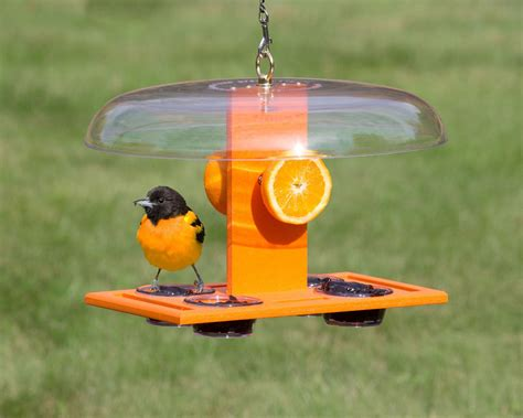 how to make an oriole jelly feeder wiring diagrams