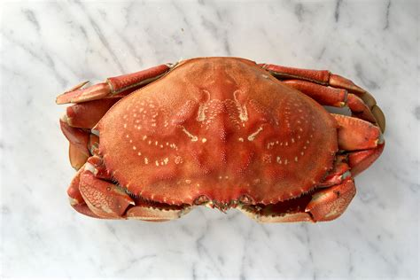 Cooling Crab how to clean fresh crabs start with fresh and lively crabs
