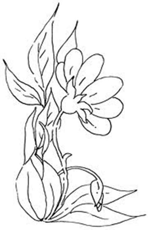 gambar  contoh gambar sketsa bunga mudah digambar