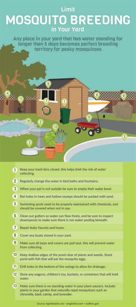 how to prevent mosquitoes in backyard what s your risk of infection from mosquitoes mytoba ca