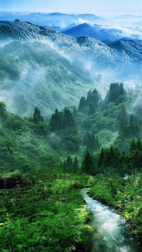 beautiful nature wallpaper  mobile