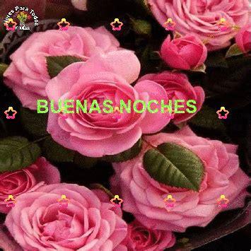 imagenes buenas noches flores flores para todos y mas buenas noches