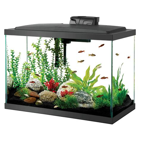 Lu Led Aquarium Bandung aqueon led aquarium kit 20h black petco