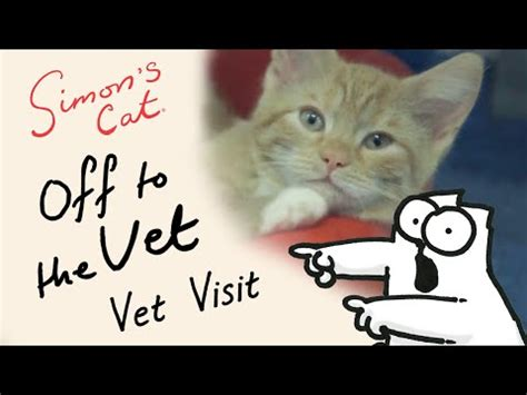 6 Signs Your Cat You Simon S Cat Guide To simon s cat to the vet preview vidoemo