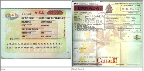 student visa requirements for study in canada du học canada ph 226 n biệt visa v 224 study permit 171 du học canada