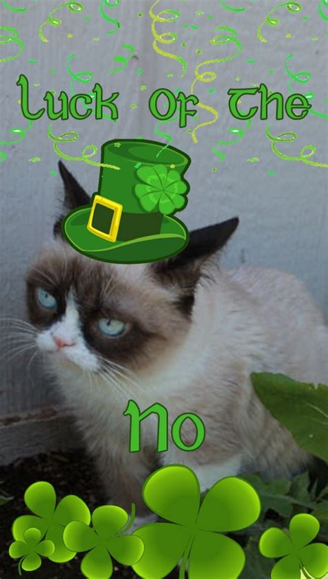 Happy St Patricks Day Meme - more st patrick s day memes 43 pics
