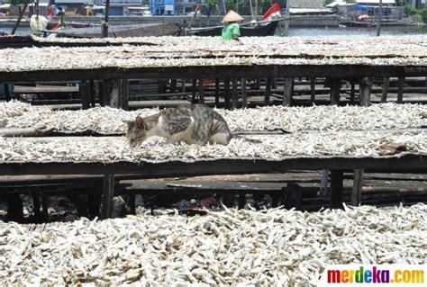 Jual Ikan Asin Per Kg by Foto Musim Hujan Membawa Berkah Bagi Pembuat Ikan Asin