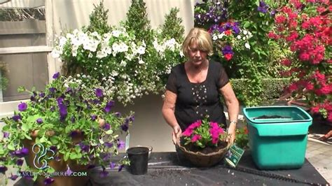 Hanging Plant Diy how to make a hanging basket of petunias easy youtube