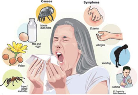 symptoms of allergies anatomy of an allergy