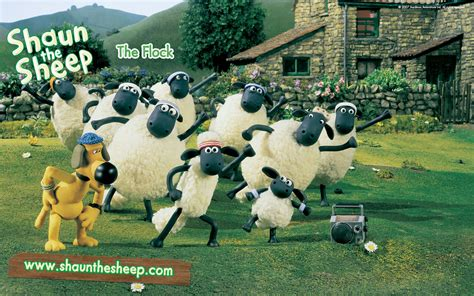 from shaun the sheep shaun the sheep images shaun the sheep hd wallpaper and background photos 2826701