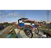 Dubai Miracle Garden  The Most Beautiful And Largest