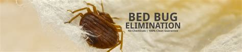 bed bug solution bed bug solutions your bed bug solution extreme heat pest