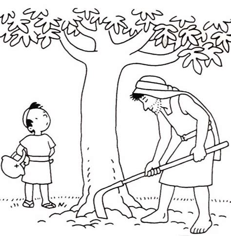 coloring page of a fig tree parable of the barren fig tree coloring pages