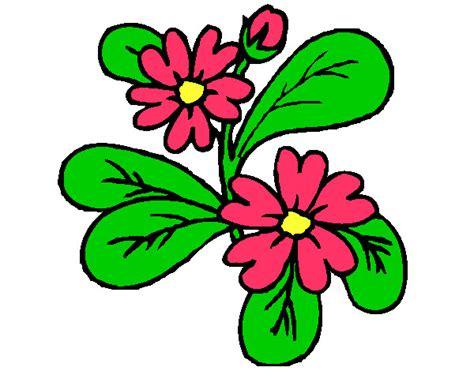 imagenes de flores a color imagenes de flores para imprimir en color imagui