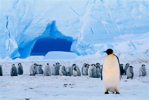 nations  designate antarctic marine protected areas