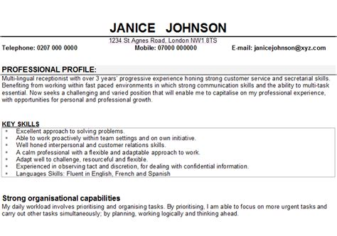 doc 728530 personal resume sles personal profile