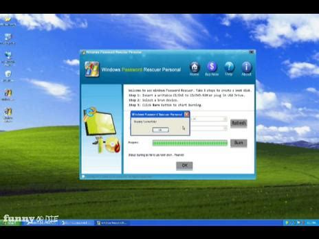 resetting windows xp reset windows xp administrator passwod popscreen