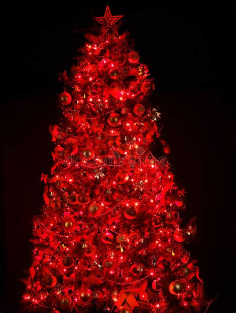 christmas tree with light and red ball stock image