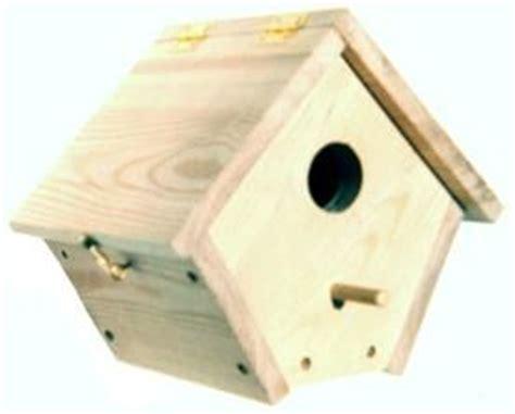 wren house design 25 best bird house plans ideas on pinterest diy birdhouse birdhouses and simple