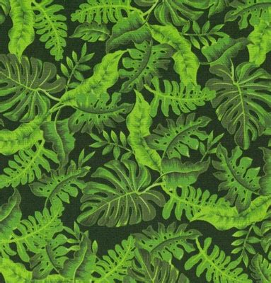 jungle pattern texture 73 best jungle patterns illustrations images on