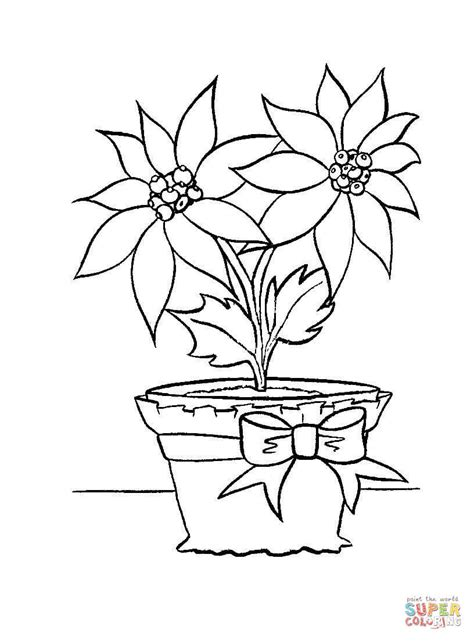coloring pages christmas flowers christmas flower in in a pot coloring page free