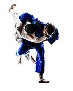 Jiu Jitsu Lorton Jiu Jitsu Bjj Muay Thai Fitness Classes