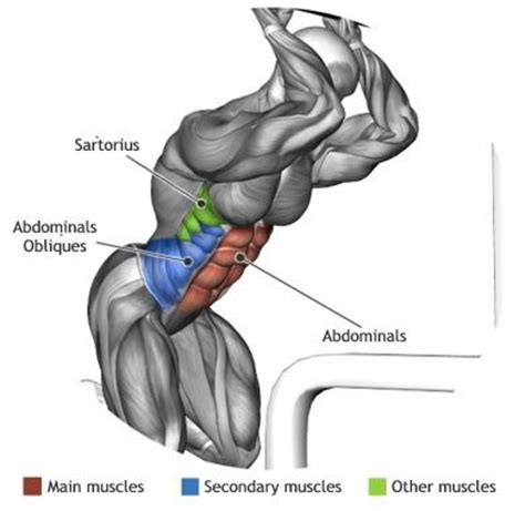 esercizi addominali obliqui interni 813 best vacuit 233 images on workouts fitness
