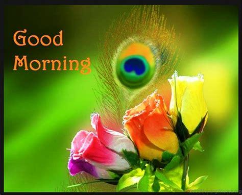 117 Amazing Good Morning Wishes