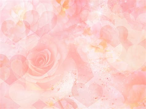 wallpaper in pink habrumalas pink rose background wallpaper images
