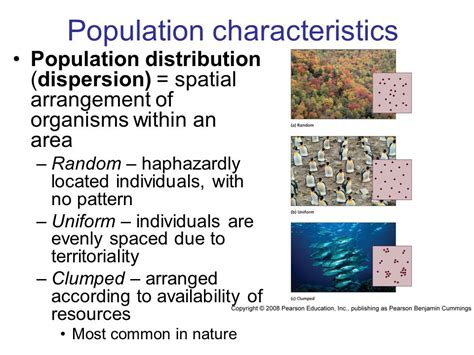 most common distribution pattern in nature population characteristics ppt video online download