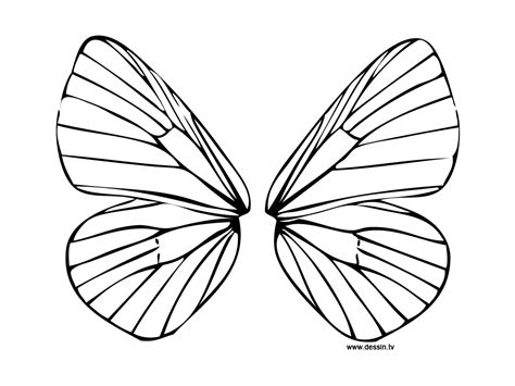 Wings Coloring Pages coloring wings