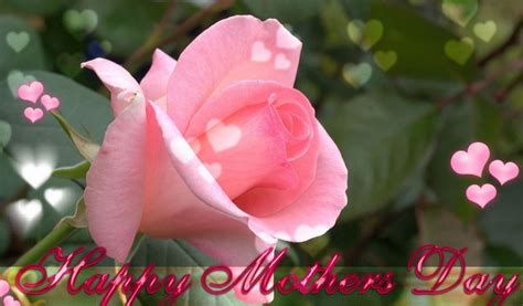 link fiori da condividere auguri per la festa della mamma immagini post frasi