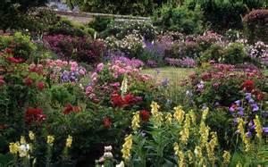 Uk Garden Flowers Mottisfont Gardens Hshire Uk The Best Ro Flickr