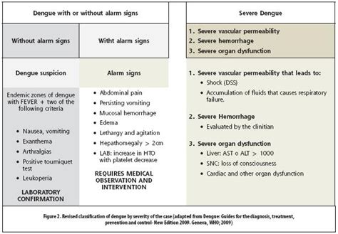 types and pattern of fever severe dengue
