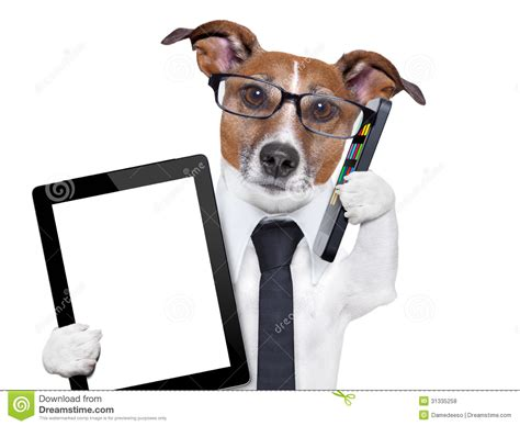 Pc Dogs business stock photo image of center