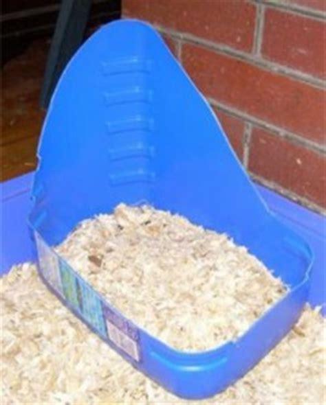 lettiere per conigli nani perch 233 il coniglio fa i bisogni fuori dalla lettiera