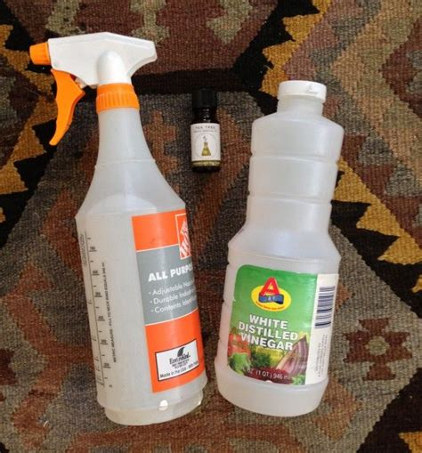 Clean Mat With Tea Tree by Diy Mat Cleaning Spray 3 Parts Water 1 Part