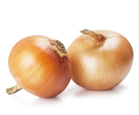 scientific findings about onions types of onions and where to use them evonews