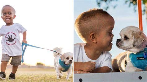 shih tzu dwarfism new helps 5 year boy with dwarfism stand to bullies today