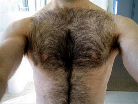 lovelypubichair com hirsutophilia love of hairy men weird philias humans have
